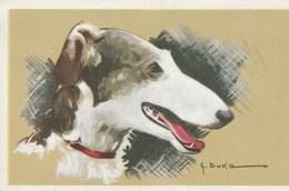 Illustrateur G. Duka-  Superbe Lévrier.    Scan - Chiens