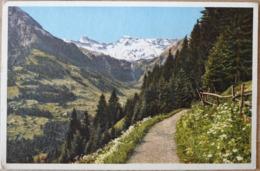 Adelboden Schweiz Hörnliweg Tierhörnli Steghorn Wildstrubel - BE Bern