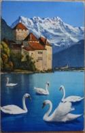 Lac Leman Chateau De Chillon Et Dents Du Midi Genfersee Schloss Veytaux Wasserburg - VD Waadt