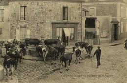 95 Taverny Fontaine De La Tuyolle / A 486 - Taverny