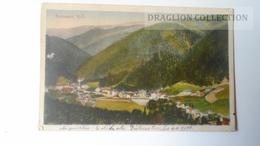 D165341 Austria,   AK -  GUTENSTEIN  N.Ö. PU 1920 - Stamp 10+40 Heller - Gutenstein