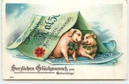 N°12998 - Carte Gaufrée - Herzlichen Glückwunsch Zum Geburstage - Cochons - Billet De Banque - Fancy Cards