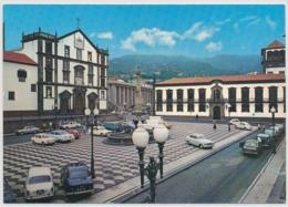 Funchial - Parca Do Municipio - Madeira - Madeira