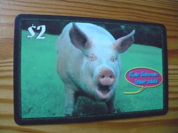 Prepaid Phonecard USA, Fone Connect - Pig - Stati Uniti