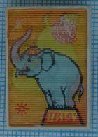 USSR / Badge / Soviet Union / UKRAINE.  Circus. Fauna. Elephant. Stereo. Stereoscope. 3 D. - Animals