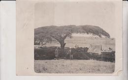 ETAT SEE SCAN    +- 18*13CMFonds Victor FORBIN (1864-1947) - Africa