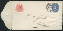 Mexico Envelope MEPSI #E43I 5 Cent. Type I Postmark CELAY 1894 - Mexico