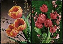 2 X Blumen  -  Ostergrüße / Geburtstag  -  Ansichtskarten Ca.1972   (11171) - Flowers