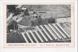 I-410 Sidman Pennsylvania Makin Mink Ranch Aerial View Postcard - United States