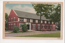 I-417 Cresson Pennsylvania State Sanatorium Unit No. 1 Curteich Linen Postcard - United States