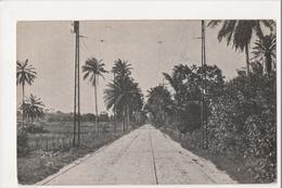 I-430 Dendezeiros Bahia Brazil Early Postcard - Postcards