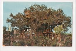 I-538 Walt Disney World Swiss Family Island Treehouse Postcard - Disneyworld