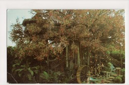 I-690 Disneyland Advertureland Swiss Family Treehouse 1-285 Postcard - Disneyland