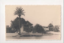 I-747 Choubrah Shubra Cairo ? Real Photo Postcard Showing Residences - Other
