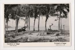 J-230 Barranquilla Colombia Coconuts At Salgar Real Photo Postcard - Postcards