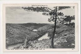 J-452 Cook Forest State Park Pennsylvania Seneca Rock Postcard 1952 - United States