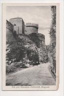J-470 Dubrovnik Ragusa Croatia Put Pod Mincetom Postcard - Postcards