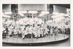 J-814 Perkasie Pennsylvania Carroursel In The Park Vintage Postcard Amusement - United States