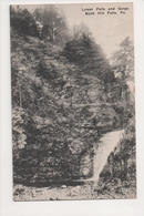 J-820 Buck Hill Falls Pennsylvania Lower Falls And Gorge Postcard - United States