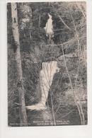 J-821 Buck Hill Falls Pennsylvania Upper And Lower Falls Postcard - United States