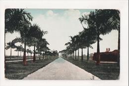 J-879 Manila Philippines A Bonifacio Malecon Drive Early Postcard - Postcards