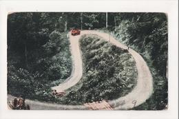 J-880 Tayabas Philippines Atimonan Road Early Postcard - Postcards