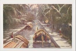 K-214 Celyon Negombo Canal And Padda Boats Plate Postcard - Postcards