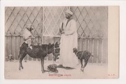 K-717 Egypt Monkey Show Donky Goat Circus Show Montreur De Singes Postcard - Postcards