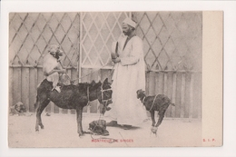 K-717 Egypt Monkey Show Donky Goat Circus Show Montreur De Singes Postcard - Other
