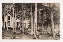 K-898 Grove At Laurel Lake Vintage Real Photo Postcard - United States