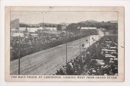 L-353 Cambridge New York Horse Race Track Great Cambridge Fair 1910 PC - Other