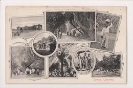 L-502 Ceylon Colombo Sri Lanka Multiview Postcard - Postcards