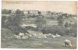 Tunbridge Wells, Mount Ephraim, 1908 Postcard To Louie James, 8 Byron Street, Derby - England