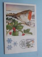 CHRISTMAS > Colleen Corlett Design ( Zie Foto's ) 10*10*1995 > Bannaghtyn Y Nollick ! - Isola Di Man