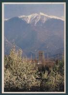 CONFLENT - Abbaye De St Michel De Cuxa - Entre L'Hiver Et Le Printemps - Frankreich