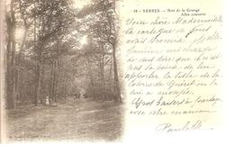 91 - Yerres - Bois De La Grange - Allée Couverte - Yerres
