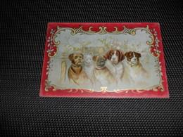 Chromo ( 7231 )  Chocolade   Chocolat Louis Diltoer  MENIN   Meenen  Menen -  Chien  Hond - Chocolate