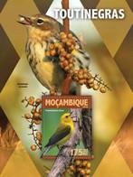 Mozambique, 2016. [moz16130] Warblers (s\s+m\s) - Oiseaux