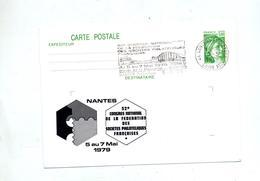Carte Postale 1.00 Sabine Flamme Nantes Congres Illustré - Ganzsachen
