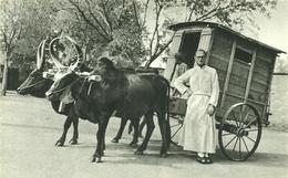 ( MADAGASCAR )(AFRIQUE  ) ( METIERS )( ATTELAGE )( RELIGION ) LE MISSIONNAIRE PART EN TOURNEE - Madagascar