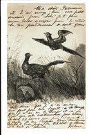 CPA - Carte Postale-Belgique -Croquis De Deux Oiseaux Dans La Nature-1904 -VM4668 - Autres