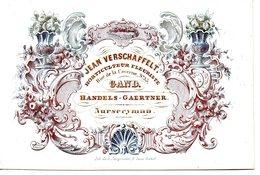 Gent: Porseleinkaart 13 X 9 Cm  Horticulteur - Nurseryman - Cartes Porcelaine