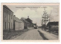 Nederhasselt - Zicht Der Maalderijen En Jongensschool - Ninove