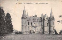 Camp De Coëtquidan (56) - Château Du Bois Du Loup - Guer Coetquidan