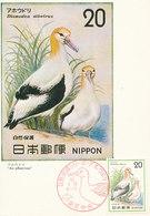 D37588 CARTE MAXIMUM CARD TRIPLE 1975 JAPAN - SHORT-TAILED ALBATROSS CP ORIGINAL - Albatros