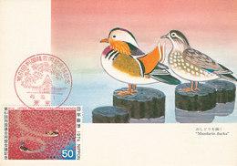 D37589 CARTE MAXIMUM CARD 1974 JAPAN - MANDARIN DUCKS CP ORIGINAL - Canards