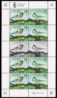 BOSNIA HERZEGOVINA CROAT POST (MOSTAR) 2019 EUROPA BIRDS Sheetlet Of 8 Stamps (4 Se-tenant Pairs) + 2 Vignettes MNH ** - 2019