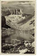 Vaud Leysin N°386 Lac De Mayen Et Les Tours D'Aï Troupeau De Vaches En 1953 - VD Vaud