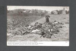 MILITAIRE - MILITARIA - GUERRE EUROPÉENNE DE 1914 - HARNACHEMENT DE CAVALERIE ALLEMANDE PRIS PAR LES BELGES - Guerre 1914-18