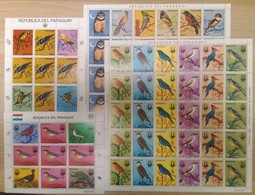 V671 1983,1985 PARAGUAY FAUNA BIRDS AUDUBON !!! MICHEL 128 EURO !!! 2 BIG SH FOLDED IN 2 + 2KB MNH - Oiseaux